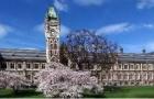 没有高考成绩如何申请去留学新西兰