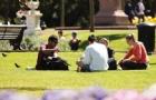 奥克兰大学预科语言