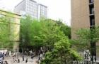 不同专业日本留学回国就业前景
