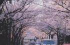 日本留学最佳申请时间