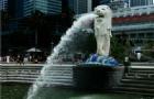 专科生申请新加坡南洋理工学院
