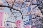 日本东京五美