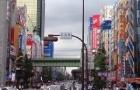 日本留学年均生活费用