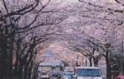 日本博士入学条件