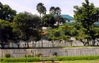 马来亚大学开学时间