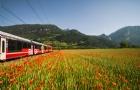 留学瑞士的条件