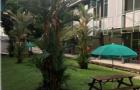 新加坡科廷大学语言