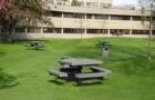 申请圣托马斯大学,录取官最看重什么?