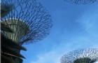 新加坡留学生命科学专业