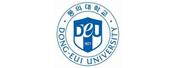 东义大学(Dong-Eui University)