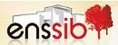 国立高级图书情报学学校|ENSSIB: Ecole Nationale Supérieure des Sciences de l'Information et des Bibliothèques