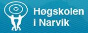 纳威克大学学院 |Narvik University College