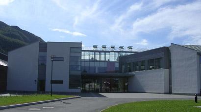 挪威内斯纳大学学院