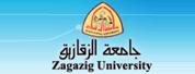扎加齐克大学|Zagazig University