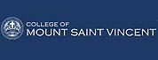 蒙特圣文森学院|College of Mount St. Vincent