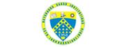 班加罗尔大学萨格学院