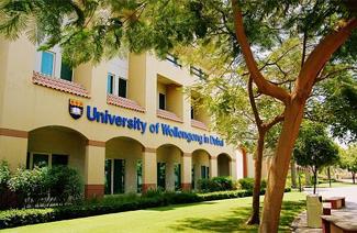 卧龙岗大学